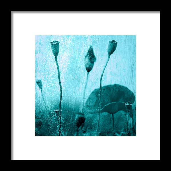 Mohn Framed Print featuring the photograph Poppy Art Image by Falko Follert