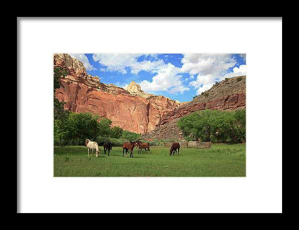 Capitol Reef National Park; Cathedral Valley; Utah; Travel; Grand Circle; Southern Utah; Beauty; Skys; Clouds; Nature; Vista; National Park; Monolith; Sandstone; Desert; Landscape; Scenic; Photography; Vast Framed Print featuring the photograph Capitol Reef National Park by Southern Utah Photography