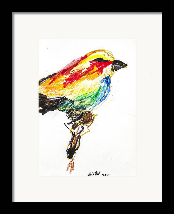 Bird Framed Print featuring the drawing Untitled by Iris Gill