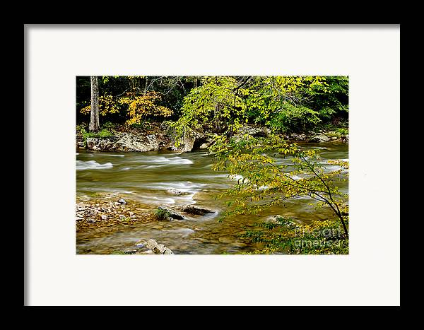 West Virginia Framed Print featuring the photograph Fall Along Williams River by Thomas R Fletcher