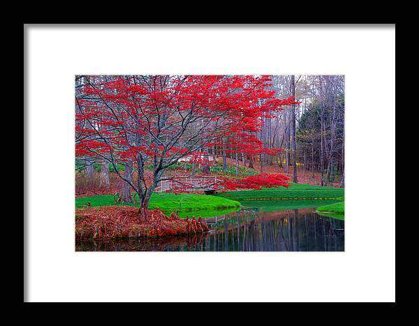 Landscape Framed Print featuring the photograph 7344a by Robert Reese