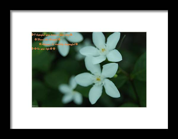 Framed Print featuring the photograph Flowers For You by Gornganogphatchara Kalapun