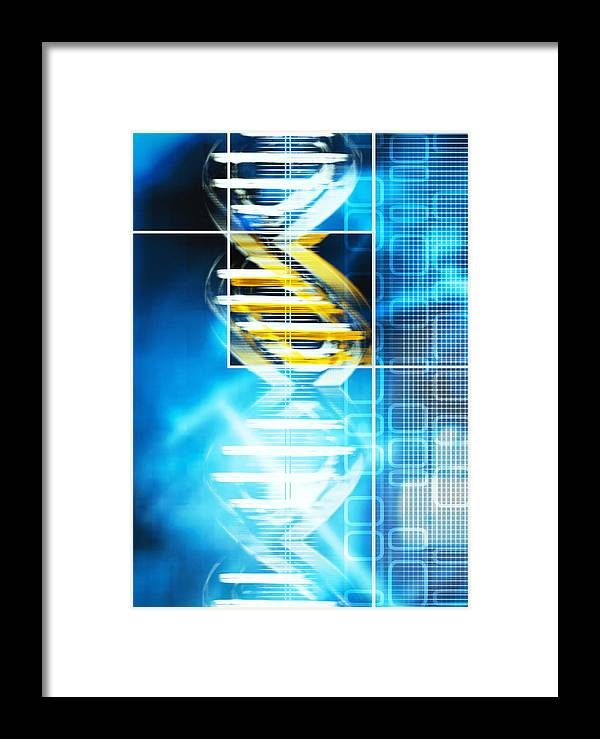 Genetics Framed Print featuring the photograph Dna Molecule by Pasieka