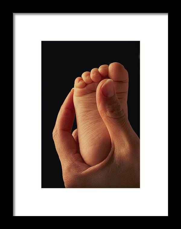 Framed Print featuring the photograph A Babys Foot In An Adult Hand by Phil Schermeister