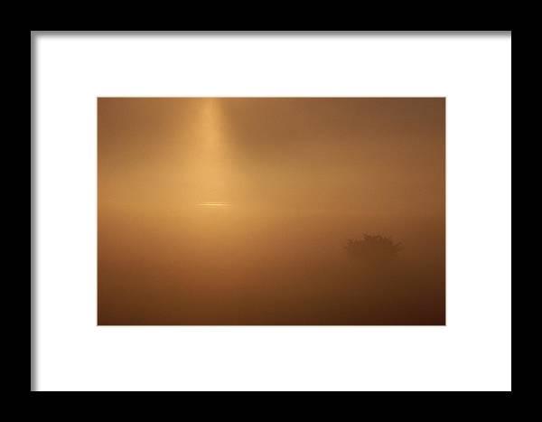 Europe Framed Print featuring the photograph A Golden Sunrise Through Mist by Mattias Klum