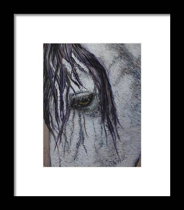 Horse Framed Print featuring the painting A Kind Eye by Jacquie McMullen