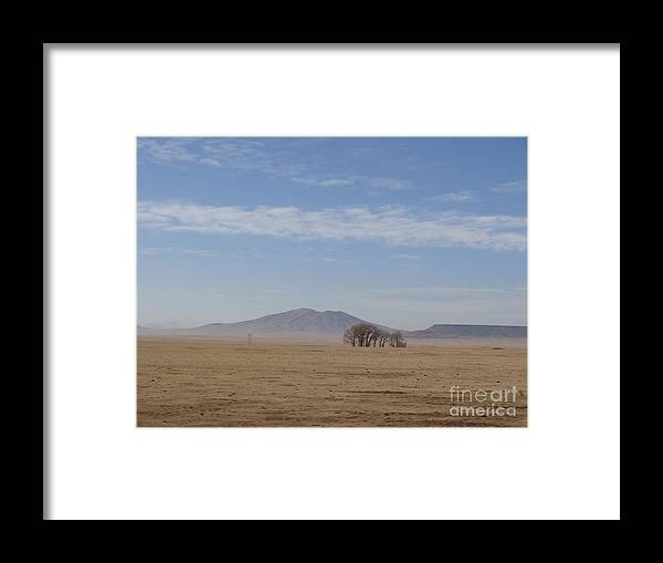 Gun Framed Print featuring the photograph A New Mexican Forest by Jack Norton