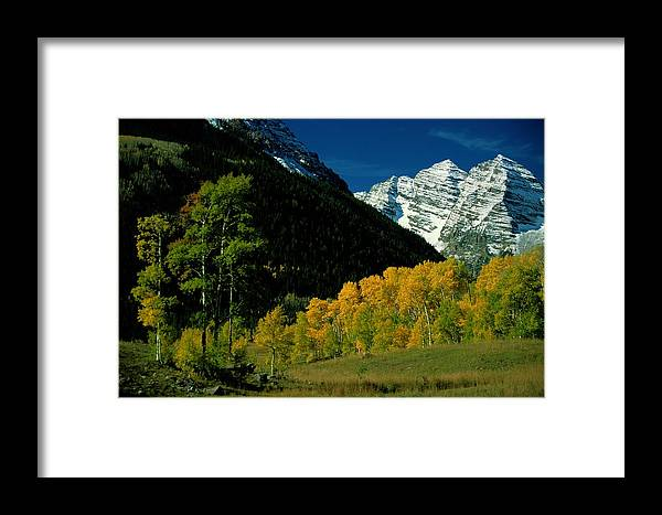 Scenic Views Framed Print featuring the photograph A Scenic View Of Yellow And Green Trees by Paul Chesley
