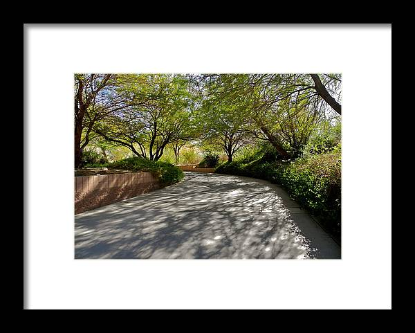 Palm Desert Framed Print featuring the photograph A Shadowed Drive in Palm Desert by Kirsten Giving