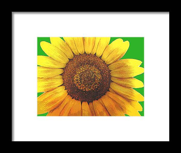 Sunflower Framed Print featuring the pyrography A Sunny Day by Adrienne Lahr
