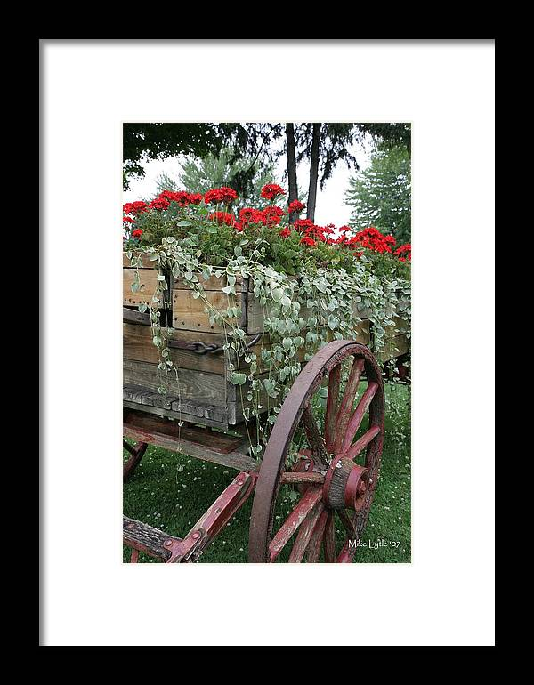 Flower Framed Print featuring the photograph A Wagon Full by Mike Lytle