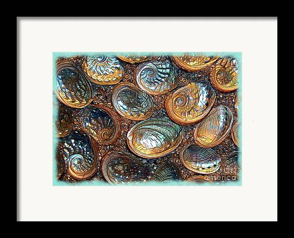 Abalones Framed Print featuring the photograph Abalones by Judi Bagwell
