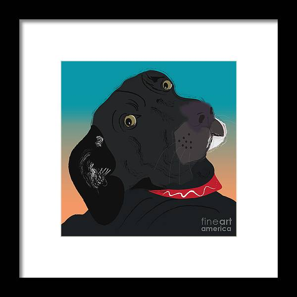 Labrador Black Lab. Pet. Red Collar. Looking Back Framed Print featuring the digital art Abby by Cheryl Snyder