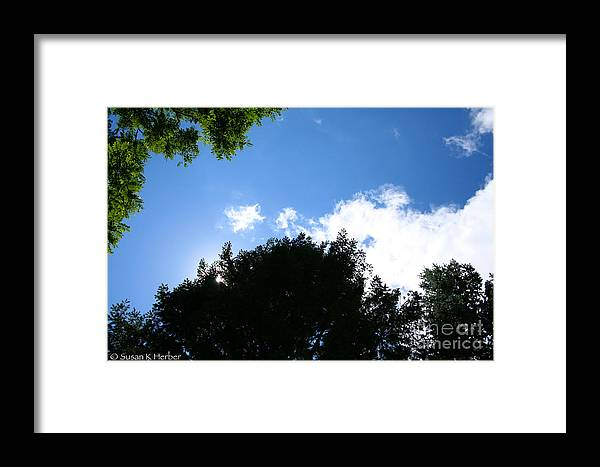 Blue Framed Print featuring the photograph Above The Trees by Susan Herber