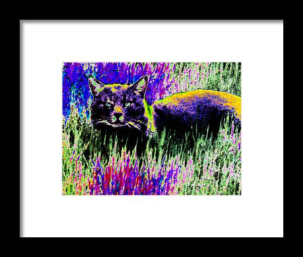 Cat Framed Print featuring the digital art Abstract Of Tabby by Eric Forster