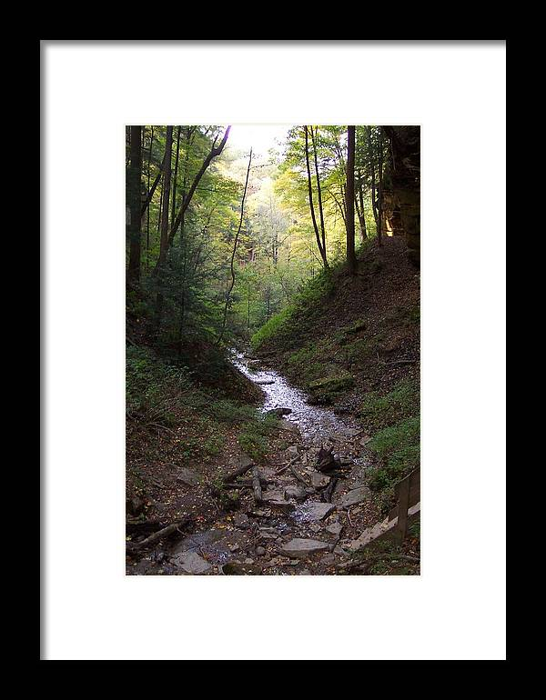 Stream Framed Print featuring the photograph Adventure by Brenda Donko