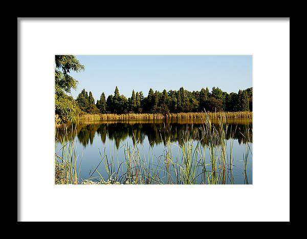 State Park Framed Print featuring the photograph Alafia River State Park by Herman Boodoo