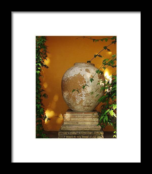 Alcazar Framed Print featuring the photograph Alcazar Urn by Greg Matchick