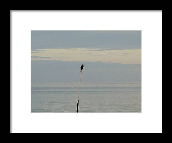 Ocean Framed Print featuring the photograph Alone by Mark Owenby