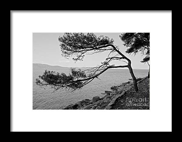 Sea Framed Print featuring the pyrography Alone Watching The Sea by Barbara Carretta