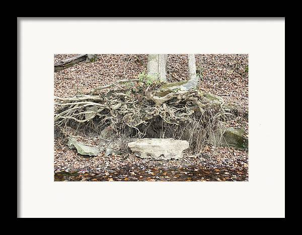 Rock Framed Print featuring the photograph Altar To Nature by James Collier