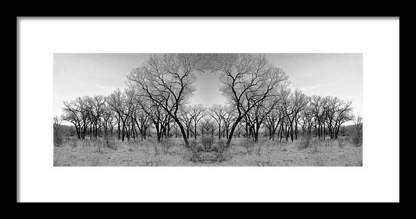 Landscape Framed Print featuring the photograph Altered Series - Bare Double by Kathleen Grace