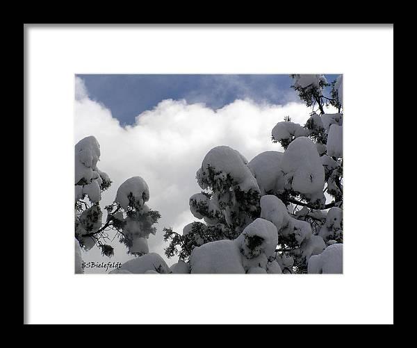 Sky Framed Print featuring the photograph Amazing Arizona Winter Skies by Sylvia Bielefeldt