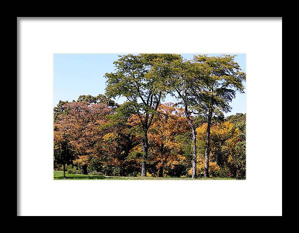 Autumn Framed Print featuring the photograph An Autumn Day by Rosanne Jordan