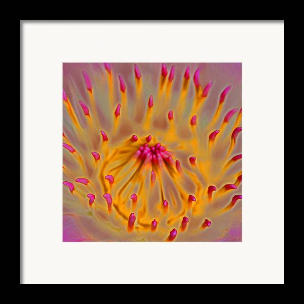 Digital Art Framed Print featuring the digital art An Inner Glow by Kerri Ligatich
