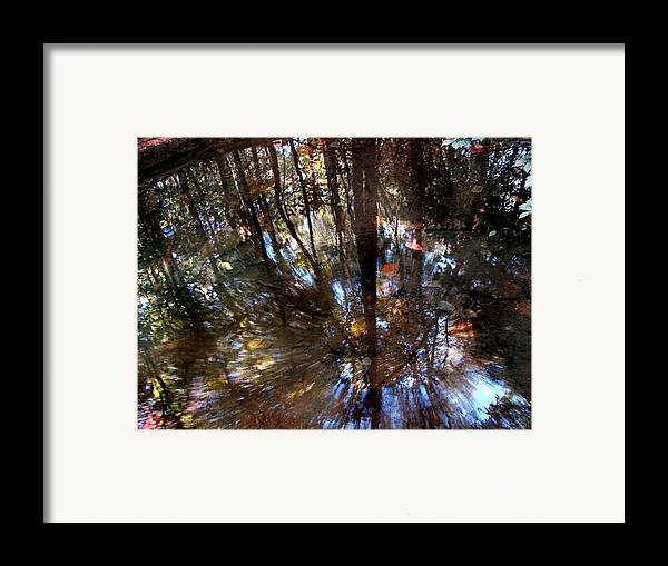 Pond Framed Print featuring the photograph Anomaly by Tammy Cantrell