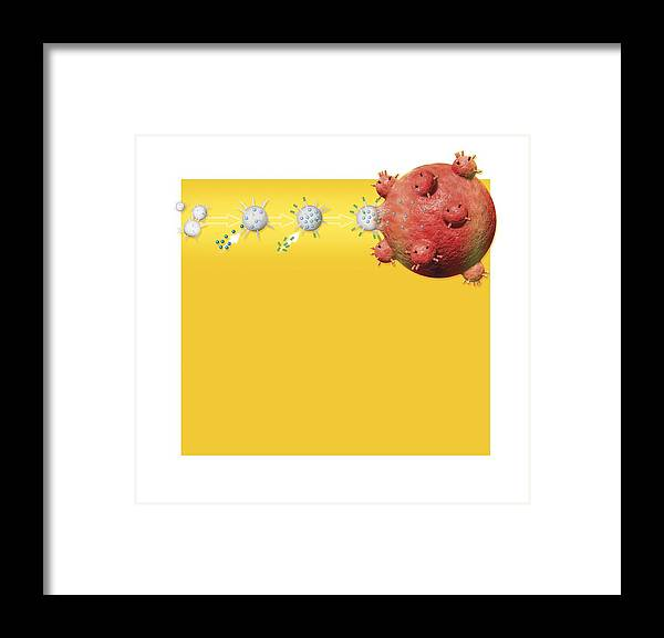Cell Framed Print featuring the photograph Anti-cancer Bacteria, Artwork by Claus Lunau