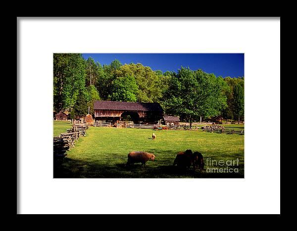 Appalachians Framed Print featuring the photograph Appalachian Barn Yard by Paul W Faust - Impressions of Light