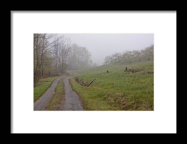 Apple Orchard Framed Print featuring the photograph Apple Orchard Road by Tom Singleton