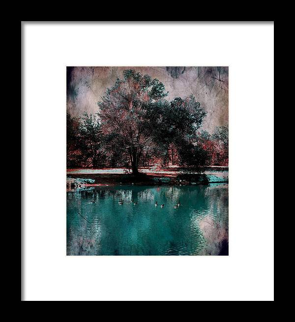 Pond Framed Print featuring the photograph Aqua Pond by Michelle Frizzell-Thompson