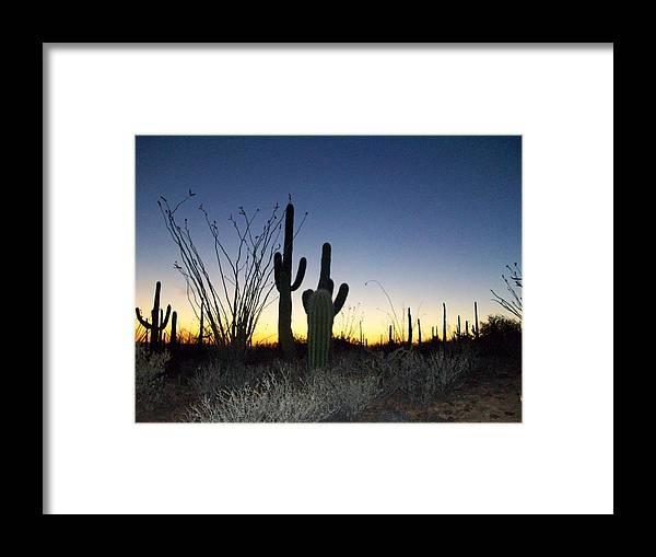 Desert Framed Print featuring the photograph Arizona Desert Sunset by Susan Lane