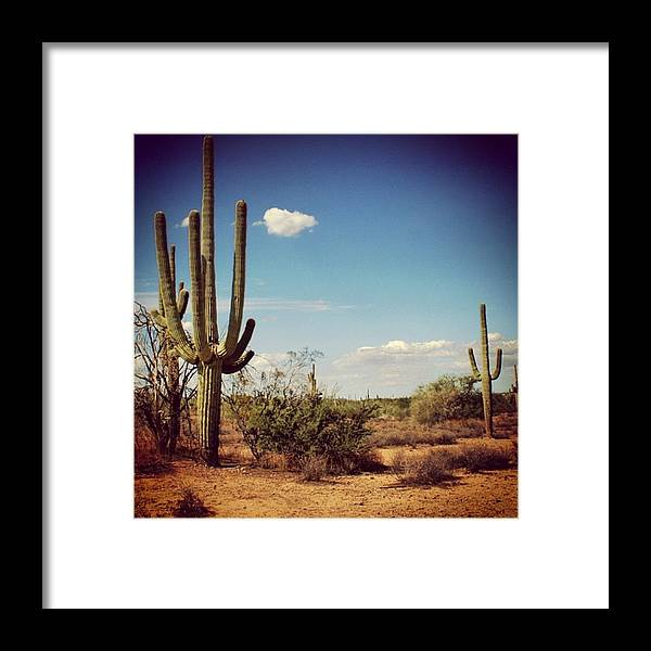 Desert Framed Print featuring the photograph Arizona by Luisa Azzolini