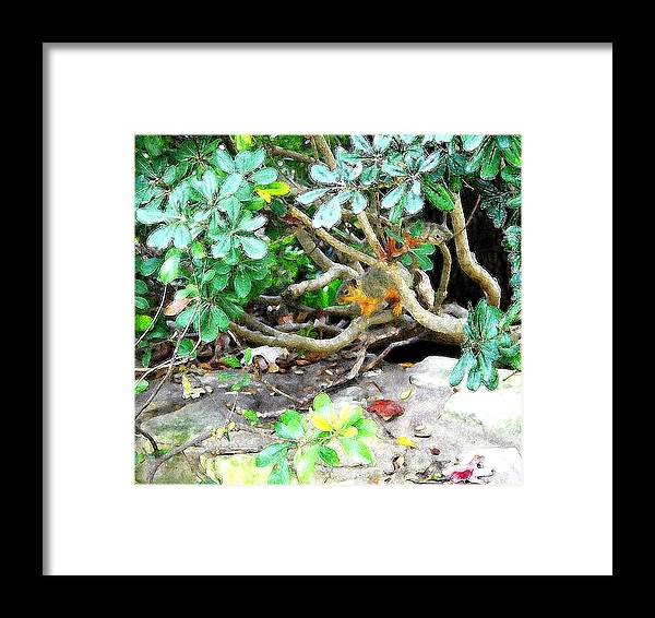Digital Framed Print featuring the photograph Art Squirrel by Nina Fosdick