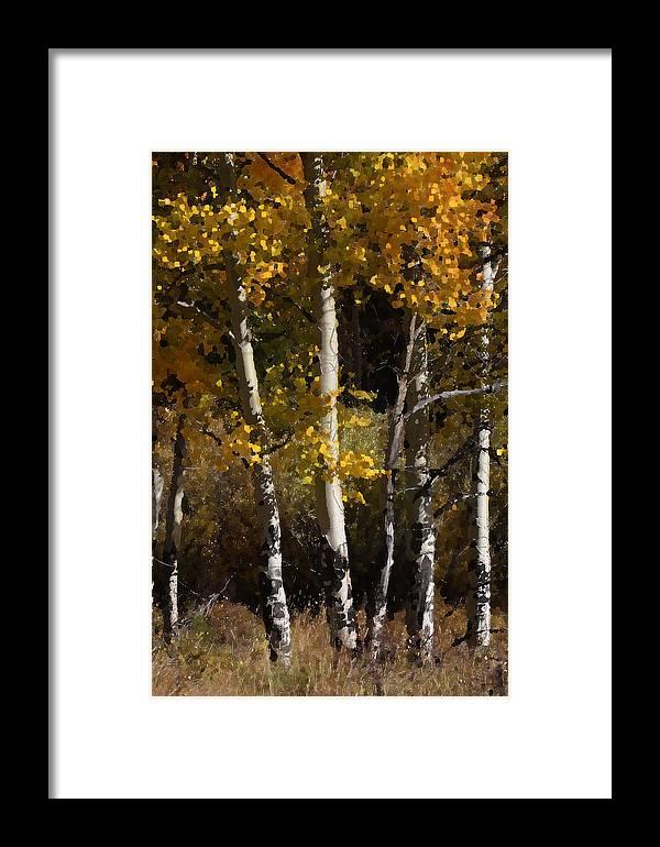 Aspen Framed Print featuring the photograph Aspen Palate Knife by Judy Deist