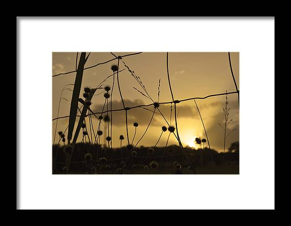 Landscape Framed Print featuring the photograph Attendance Required by Julian Garza