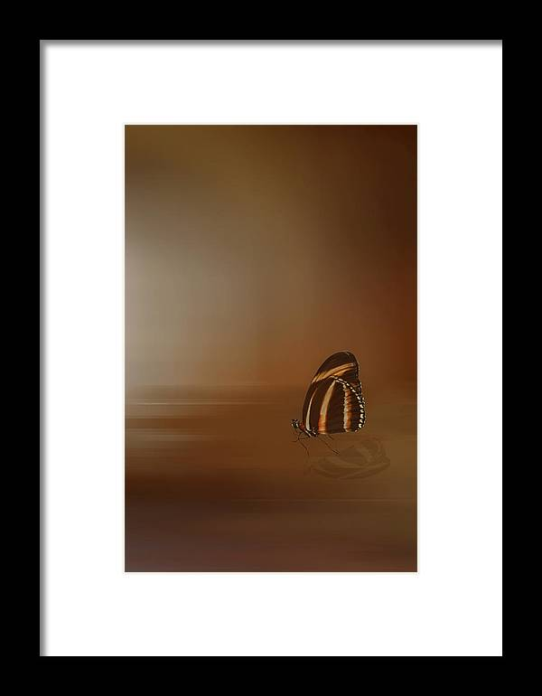 Golden Framed Print featuring the digital art Attraction by Robin Webster