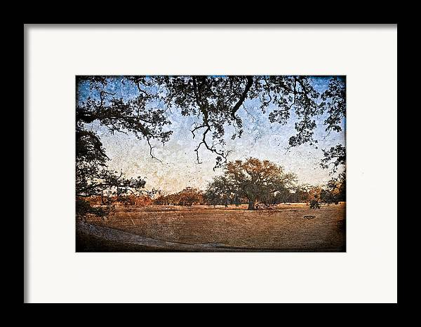 Texture Framed Print featuring the photograph Audubon Golf Course by Ray Devlin