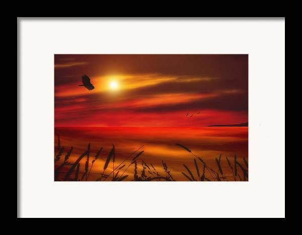 Sunset Framed Print featuring the photograph August Sunset by Tom York Images