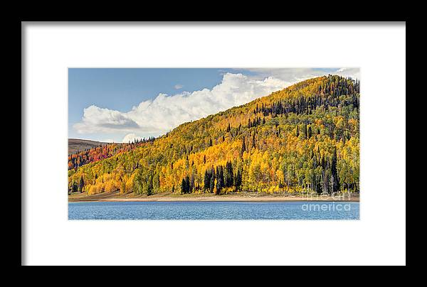 Autumn Framed Print featuring the photograph Autumn At Huntington Reservoir - Wasatch Plateau - Utah by Gary Whitton