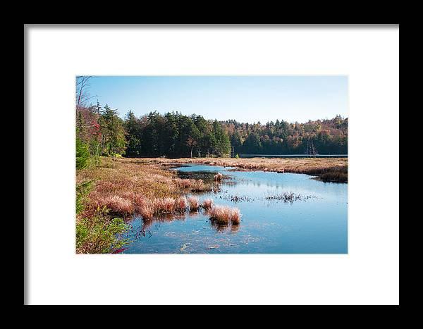 The Adirondacks Framed Print featuring the photograph Adirondack Lake 2 by David Patterson