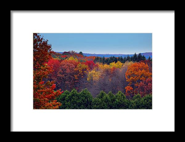 Autumn Framed Print featuring the photograph Autumn Colors by Marcia Mello