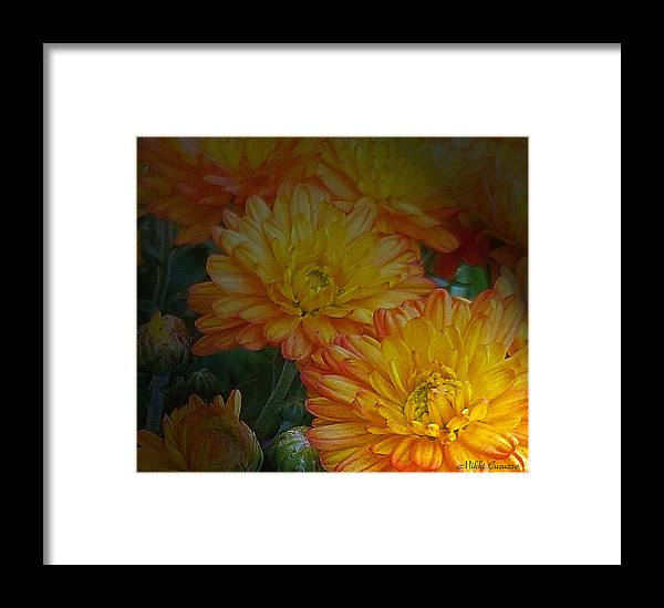 Floral Framed Print featuring the photograph Autumn Flowers by Mikki Cucuzzo