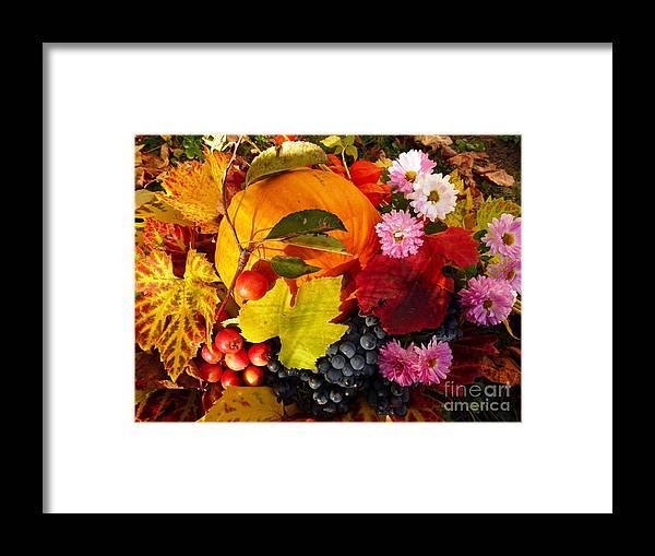 Autumn Framed Print featuring the photograph Autumn Harvest by Amalia Suruceanu