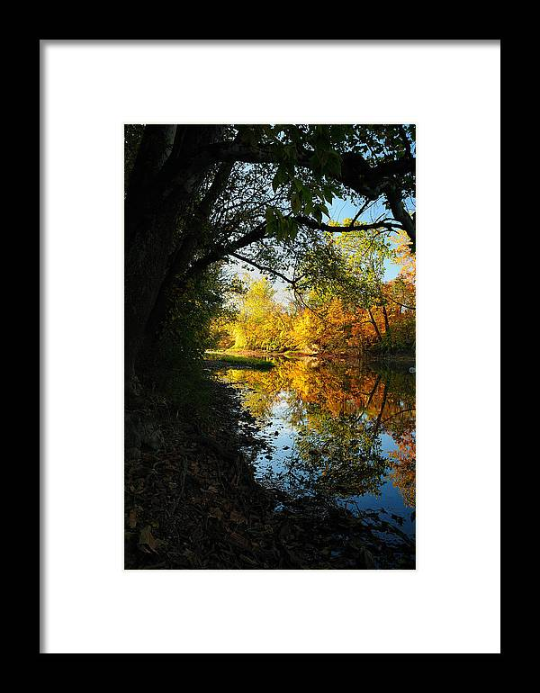 Fall Framed Print featuring the photograph Autumn In Ohio by Dick Wood