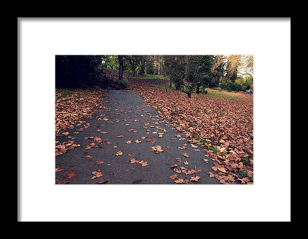 Landscape Framed Print featuring the photograph Autumn In St Fagans Park Cardiff by Ellie Coombes