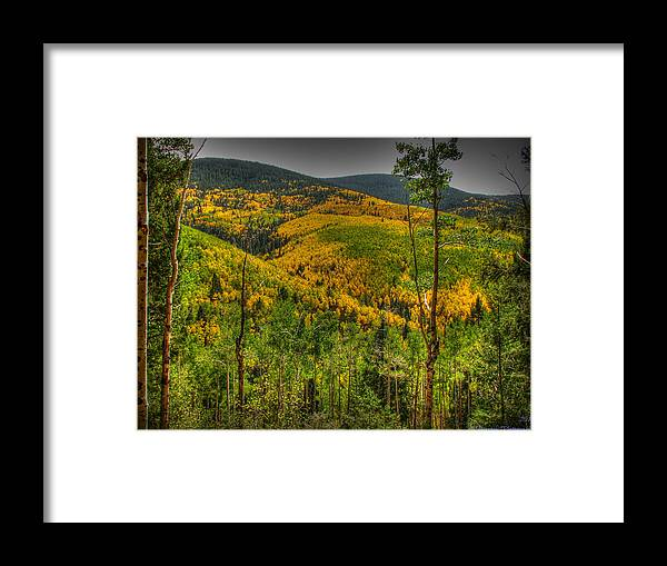 Quaking Aspen Framed Print featuring the photograph Autumn In The Rockies Hdr by Aaron Burrows